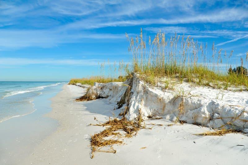 De mooie Kustlijn van Florida stock foto's