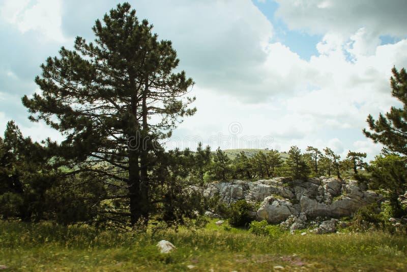 De mooie mening van berg AI-Petri de bergen en het overzees van de Krim Het overzeese landschap van de berg en stock foto