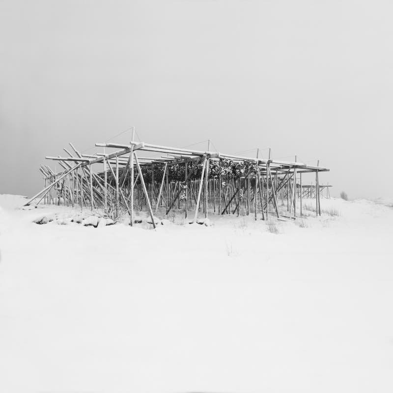 De mooie mening van toneel lofoten de winterlandschap van de Eilandarchipel met de traditionele cabines van vissersRorbuer De tij stock illustratie