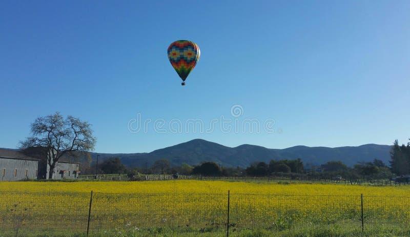 De mooie Napa-Ballon van de Vallei Hete Lucht royalty-vrije stock fotografie