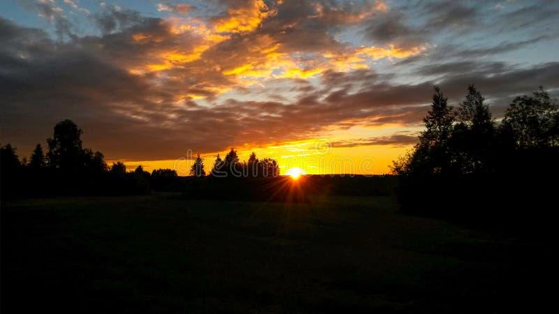 De mooie oranje zonsondergang/de zonsopgang met cirrus betrekken over landelijk gebied met silhouetten van bosbomen en horizonlij stock foto's