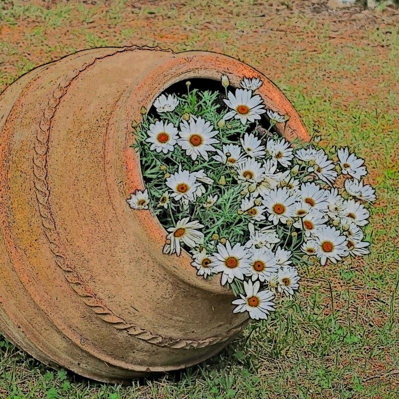 De mooie oude pot met margrieten sluit omhoog vector illustratie