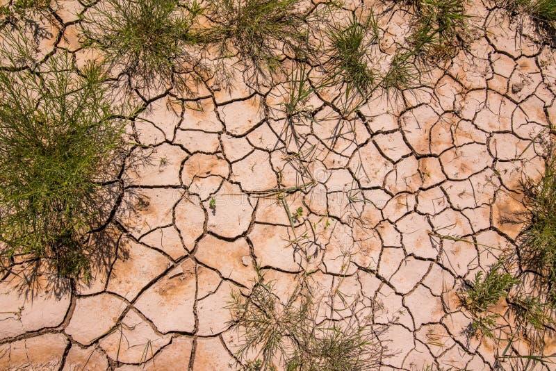 De mooie patronen leidden tot in de droge die modder/rots en de struiken in de wildernis van het Nationale Park van Badlands word stock foto's