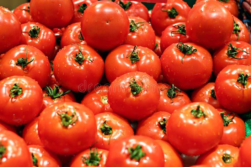 de mooie rijpe tomaten op vertoning voor verkopen royalty-vrije stock afbeelding