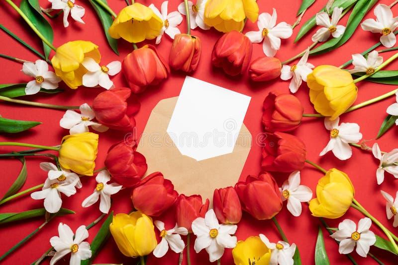 De mooie rode tulpen en de gele narcis bloeien, model van ambachttransportband met witte prentbriefkaar op een rode achtergrond stock afbeelding