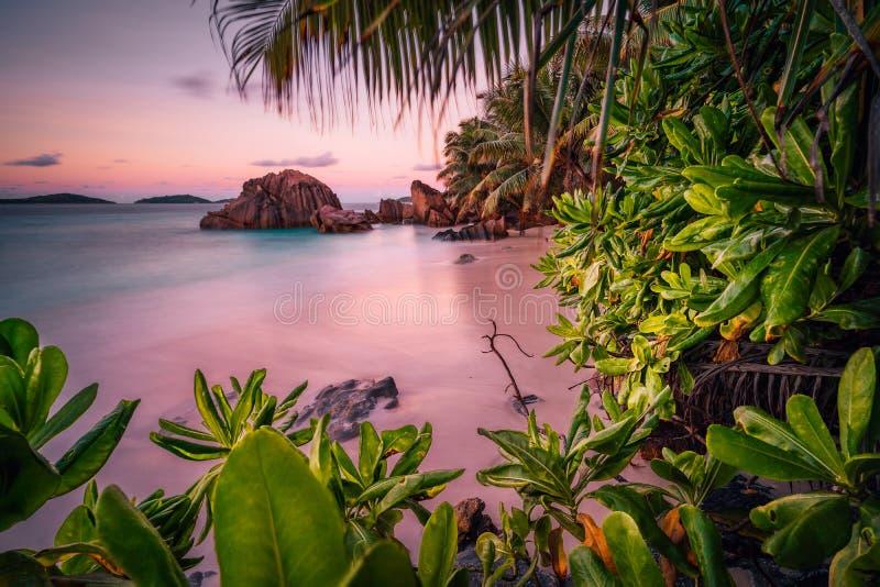De mooie romantische rode hemel van de zonsondergangzonsondergang op het paradijseiland van Seychellen Granietrotsen, palmen en w royalty-vrije stock foto