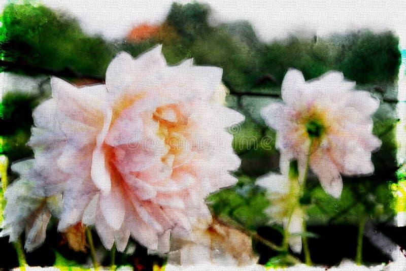 De mooie roze dahlia van de de herfstbloem vector illustratie