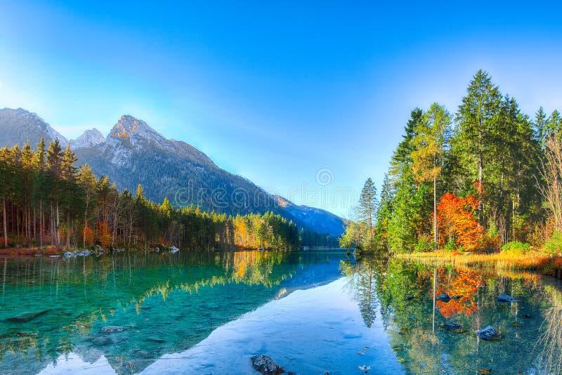 De mooie scène van de de herfstzonsopgang met bomen dichtbij turkoois water o royalty-vrije stock foto
