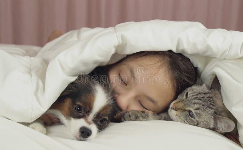 De mooie slaap van het tienermeisje zoet in bed met hond en kat royalty-vrije stock foto