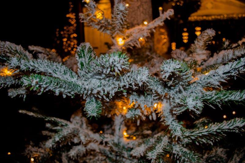 De mooie Sneeuwboom van de Kerstmisvakantie stock fotografie
