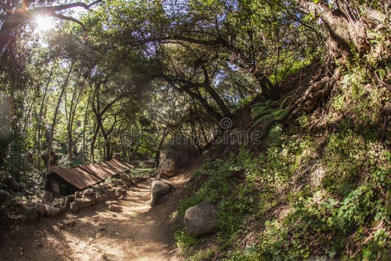 De mooie stijgingsweg naast knarst dichtbij in Santa Anita Canyon, Angeles National Forest, San Gabriel Mountain Range royalty-vrije stock afbeelding