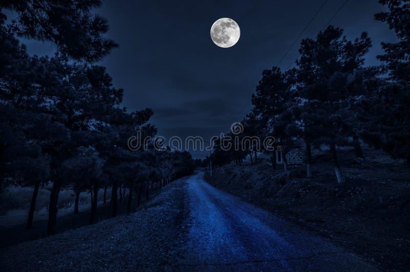De mooie straat van het landschapsdorp met gebouwen en bomen en grote volle maan bij de nachthemel De grote Kaukasus De aard G va stock foto's