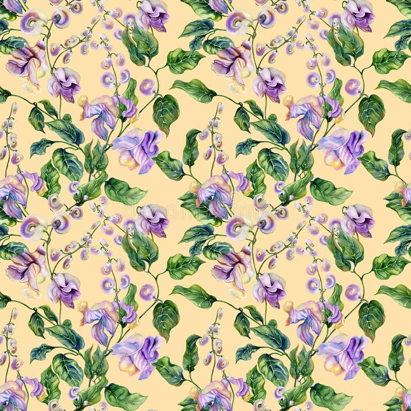 De mooie takjes van de slakwijnstok met purpere bloemen op gele achtergrond Naadloos BloemenPatroon Het Schilderen van de waterve vector illustratie