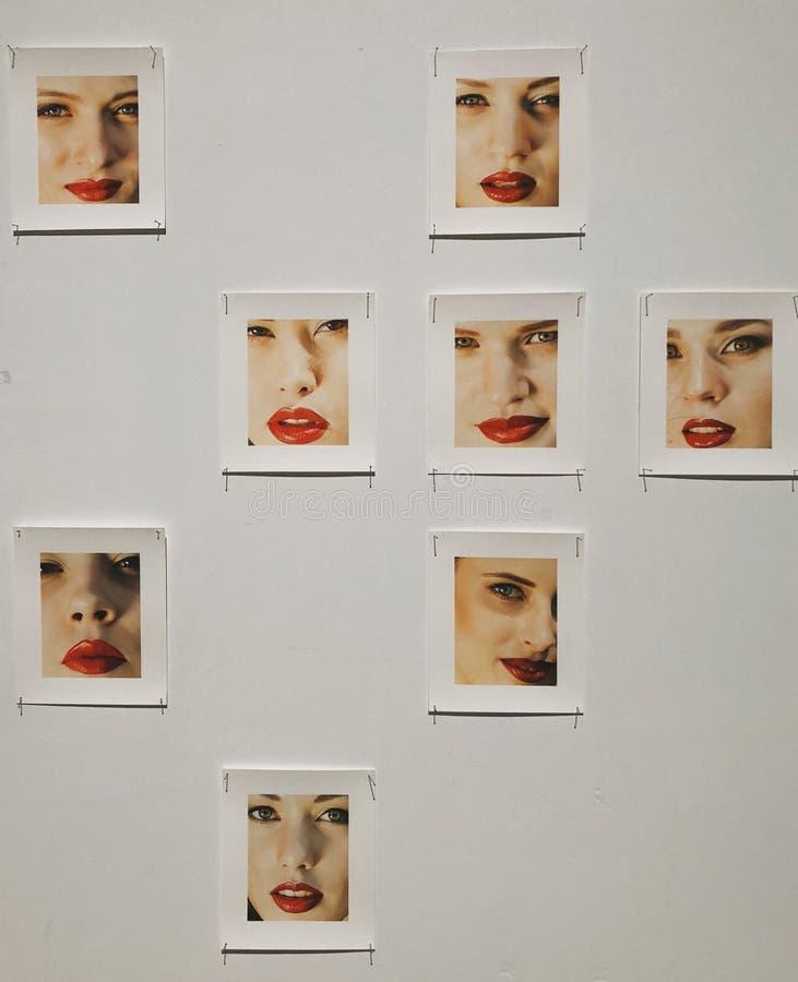De mooie tentoonstelling van de de foto'skunst van het vrouwengezicht stock foto