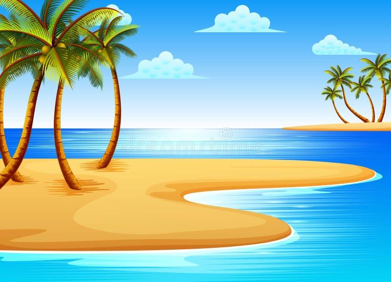 De mooie tropische strandmening met sommige kokospalmen op de kust vector illustratie