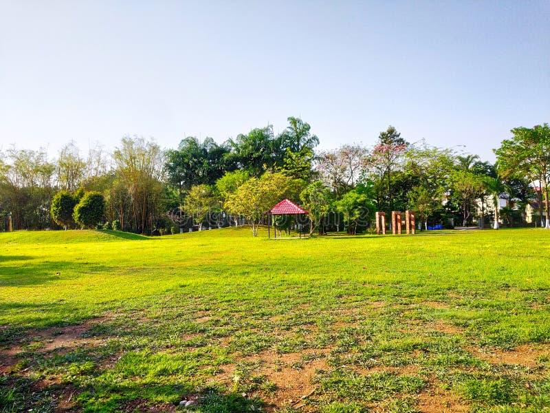 De mooie tuin en over volledig groen gras en achter en ausome blauwe gezien hemelachtergrond was magisch stock foto