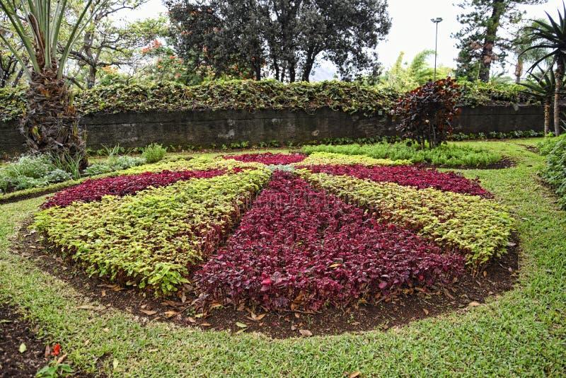 De Mooie Tuin van het Gouverneurspaleis in Funchal op het Eiland Madera Portugal royalty-vrije stock afbeeldingen