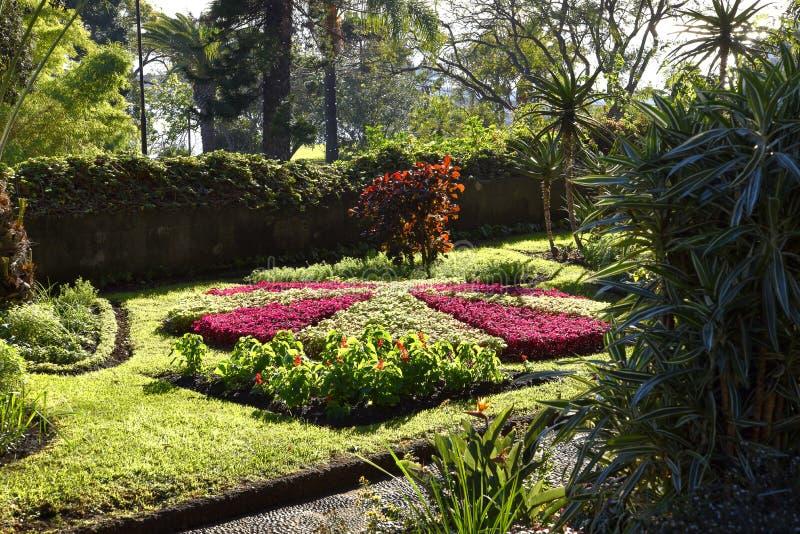 De Mooie Tuin van het Gouverneurspaleis in Funchal op het Eiland Madera Portugal royalty-vrije stock fotografie