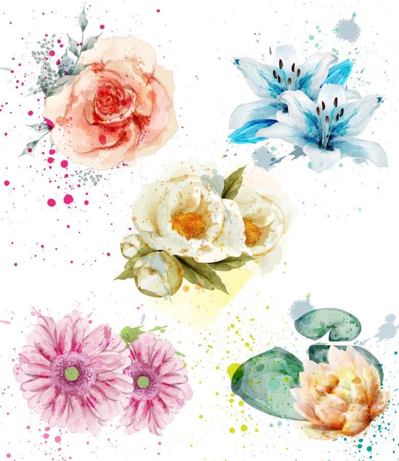 De mooie vastgestelde Vector van de bloemenwaterverf Blauwe lelie, gerber en rozen bloemeninzamelingen stock illustratie