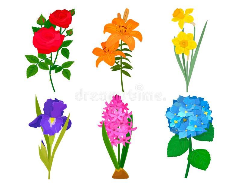 De mooie vector van de het ontwerpdecoratie van het bloemboeket van het de aardontwerp van de de bloemtekening bloemen van de het royalty-vrije illustratie