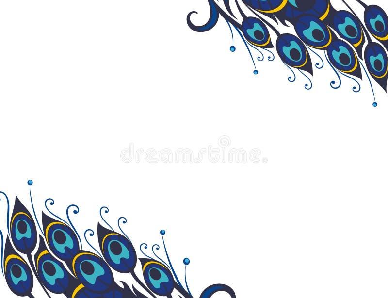 De mooie vectorachtergrond van pauwveren stock illustratie