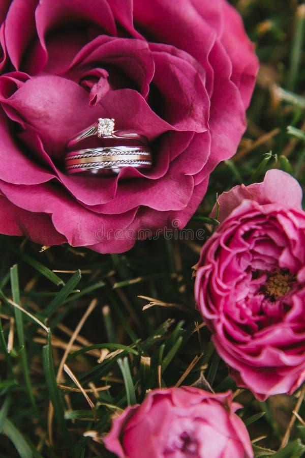 De mooie verlovingsring met een diamantclose-up met een huwelijks gouden ring in roze nam liggend op het gras toe stock foto's