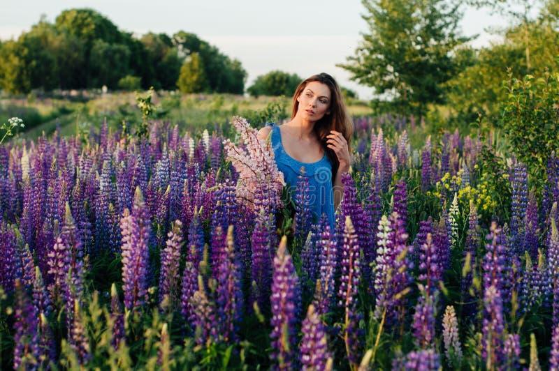 De mooie vrouw kleedde zich in een kleding in bloemenlupines bij zonsondergang royalty-vrije stock foto's