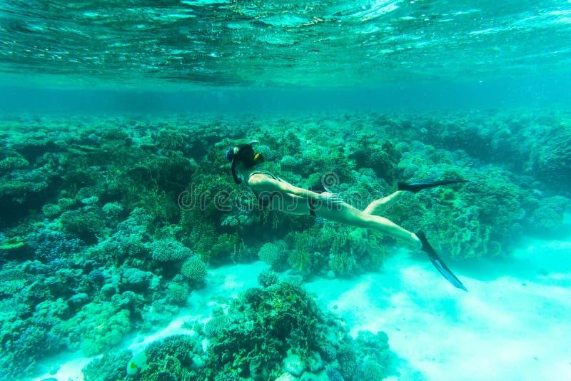 De mooie Vrouw snorkeler onderzoekt koraalrif in zeewater royalty-vrije stock fotografie