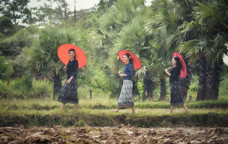 De mooie Vrouw van Thailand royalty-vrije stock afbeeldingen