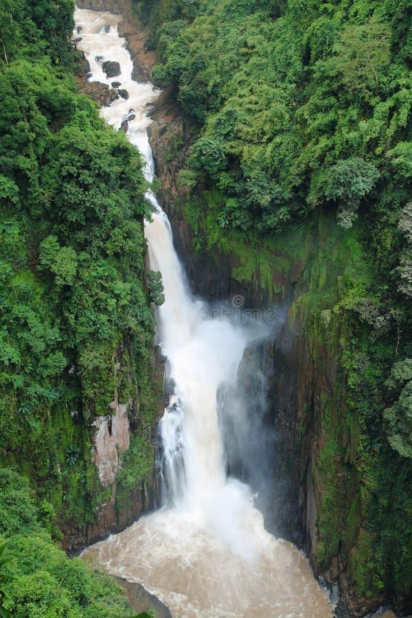 De mooie waterval bij het nationale park van Khao Yai, stock foto's