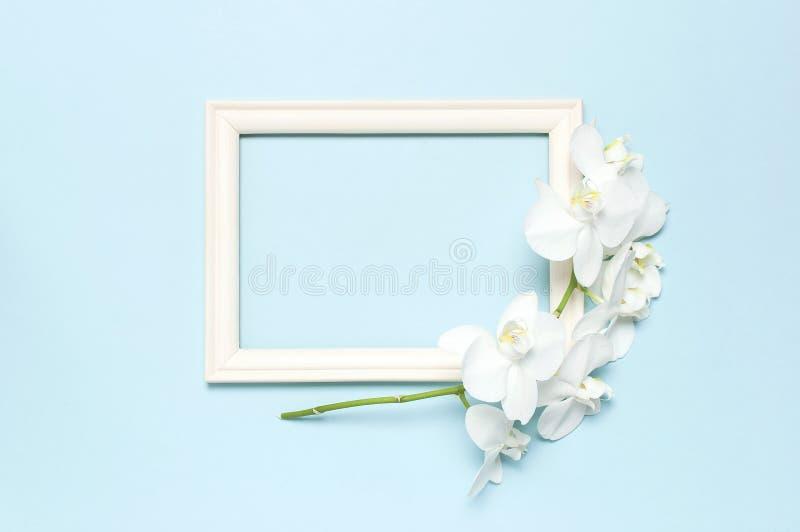 De mooie Witte Phalaenopsis-orchideebloemen, houten witte fotokaders op blauwe achtergrond hoogste meningsvlakte lagen Tropische  royalty-vrije stock afbeelding