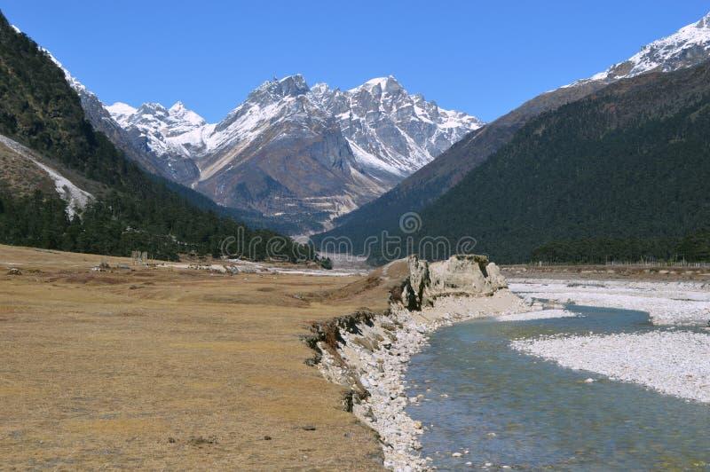 De mooie yumthangvallei de rivier van van Sikkim, India draagt sneeuw die koud zoet water smelten stock foto