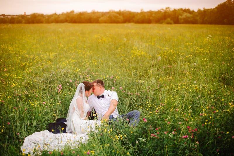 De mooie zitting van het huwelijkspaar op de weide Copyspace in recht royalty-vrije stock foto's