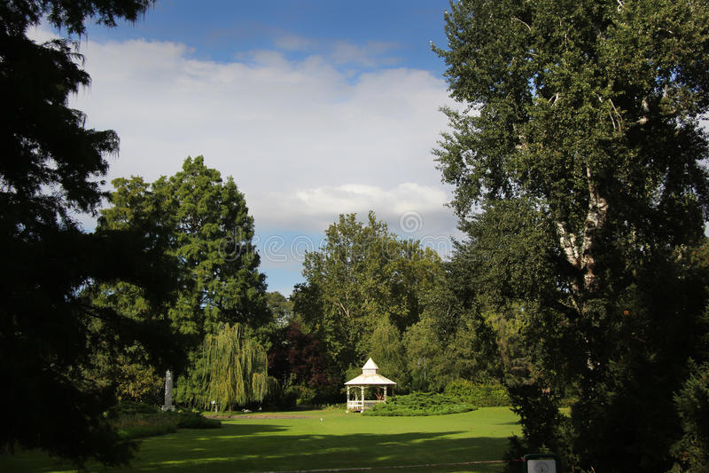 De mooie zomer in stadspark royalty-vrije stock foto