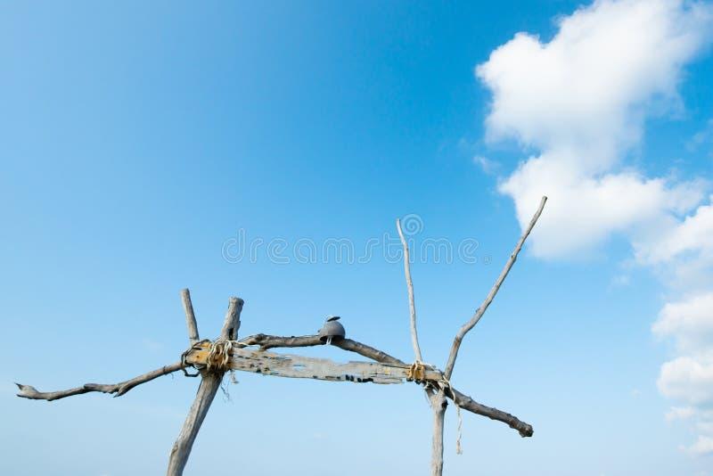 De mooie de zomertijd, betrekt zacht en lichtblauwe hemel bij zonneschijndag Oude houten die boog op blauwe voorgrond wordt geïso royalty-vrije stock foto