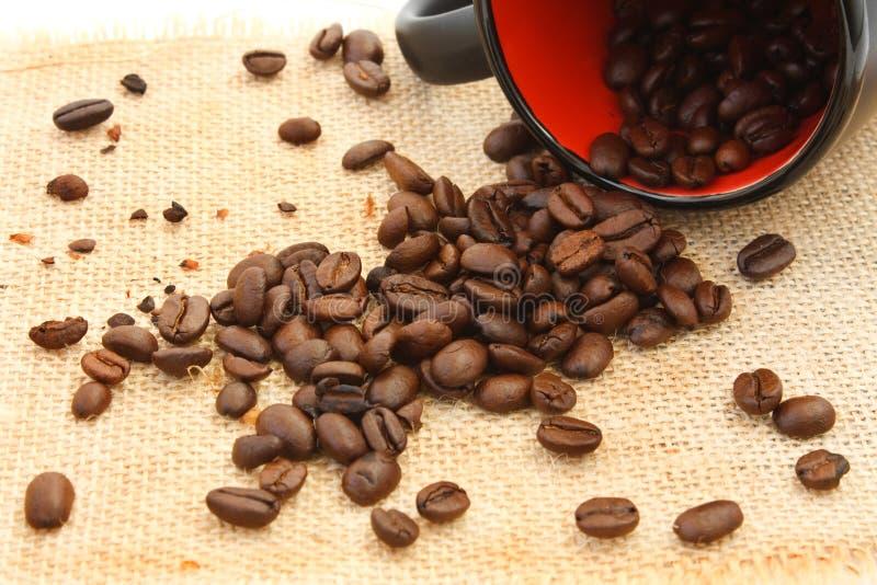 De morserij van de koffie stock foto's