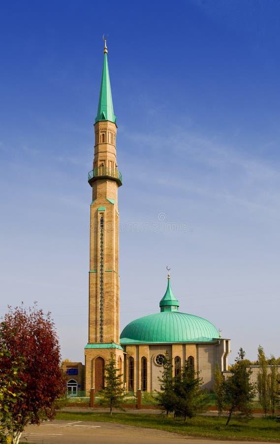 De moskee Jamig   royalty-vrije stock foto's