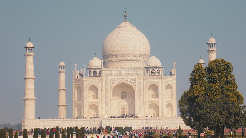 De moskee van Mahal van Taj in Agra, India royalty-vrije stock afbeeldingen