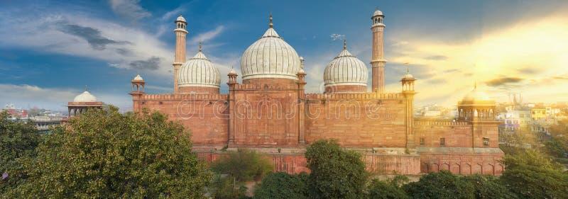 De Moskee van Masjid van Jama, oud Delhi, India stock afbeeldingen
