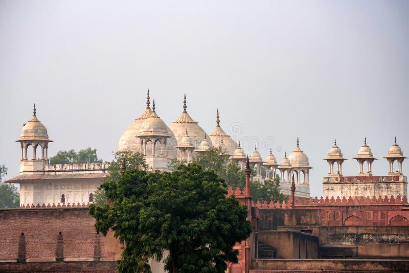 De Moskee van Moti Masjid of van de Parel in Agra-Fort, India royalty-vrije stock foto