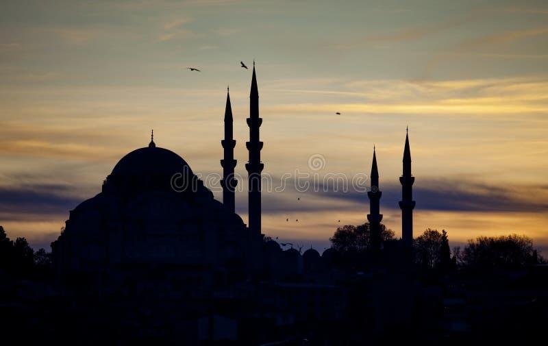 De Moskee van Suleymanie stock foto