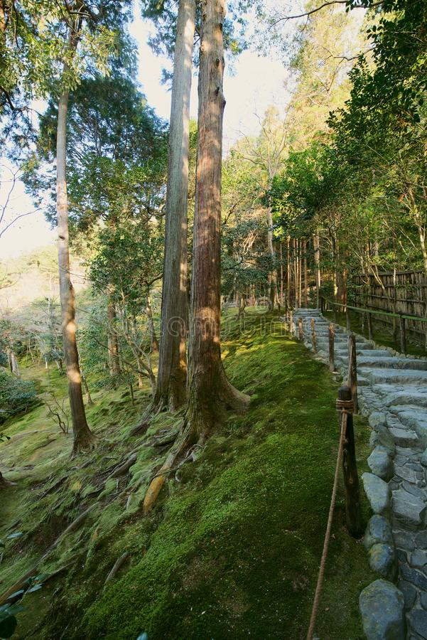 De mostuin in Ginkakuji in Kyoto, Japan royalty-vrije stock afbeeldingen