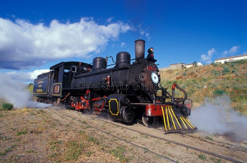 De motortrein van de stoom in Patagonië. stock afbeeldingen