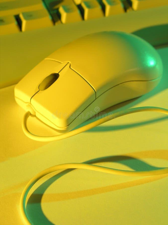 De muis en het toetsenbord van de computer stock foto