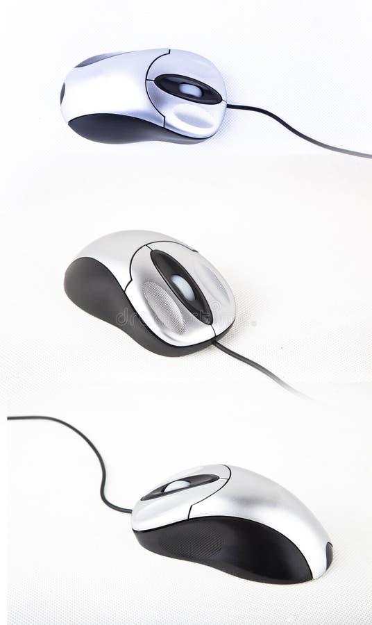 De muis van de computer royalty-vrije stock afbeeldingen