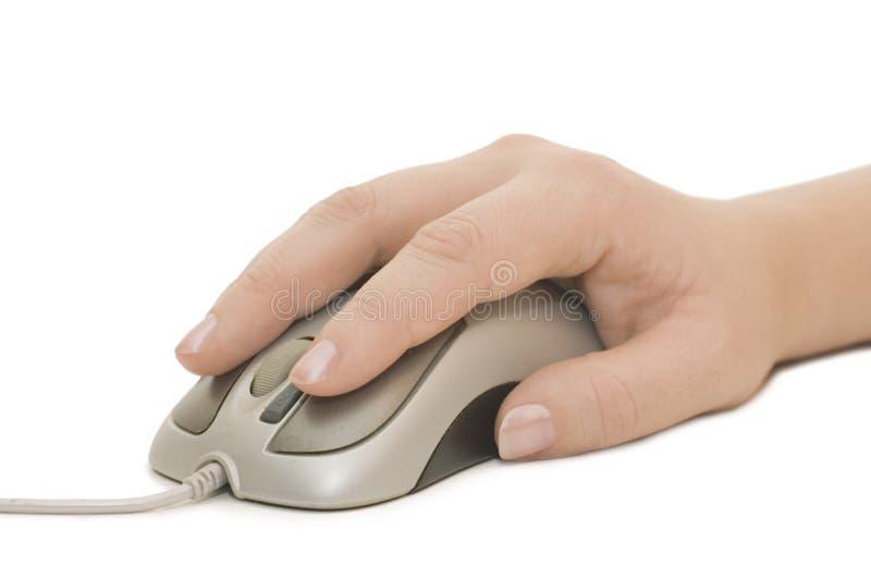 De muis van de hand en van de computer royalty-vrije stock fotografie