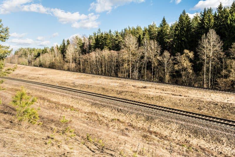 De multy-spoor spoorweg in het bos draait de hoek De lentelandschap met droog gras en een naaldbos royalty-vrije stock afbeeldingen