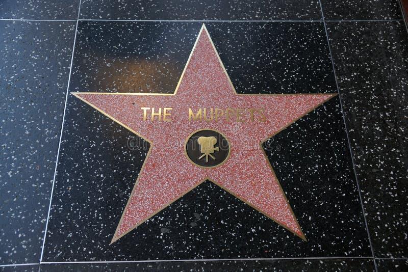 De Muppets-ster op Hollywood-Gang van Bekendheid stock foto's