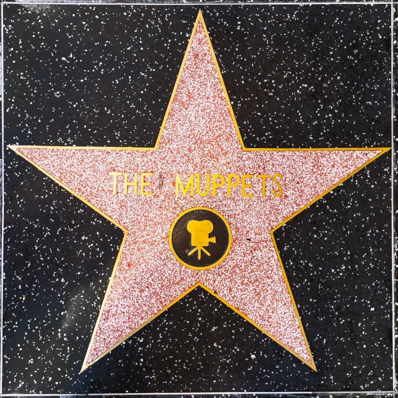 De Muppets-ster op Hollywood-Gang van Bekendheid stock foto