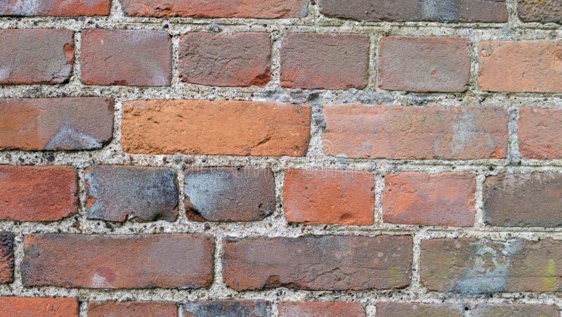 De mur de briques fin droite  image stock